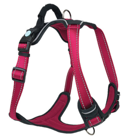 Huskimo Ultimate Harness Uluru