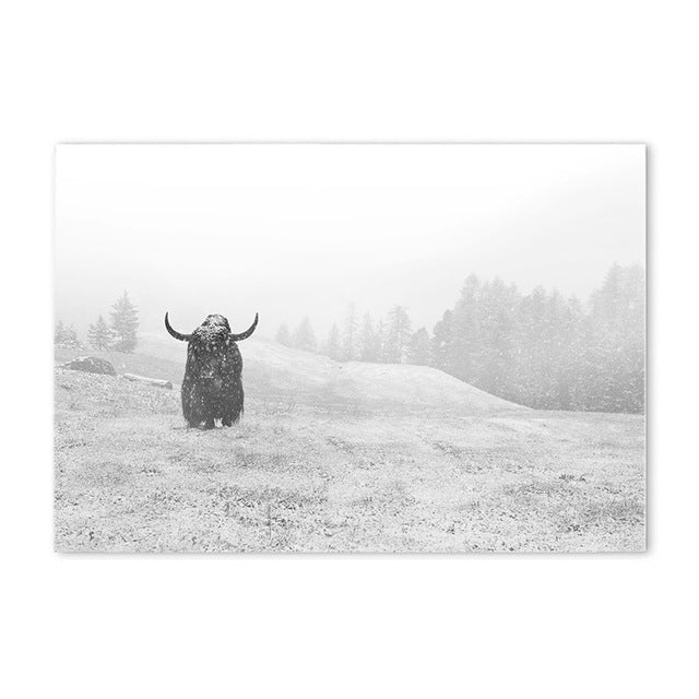 bison landscape poster cotton canvas the scandique
