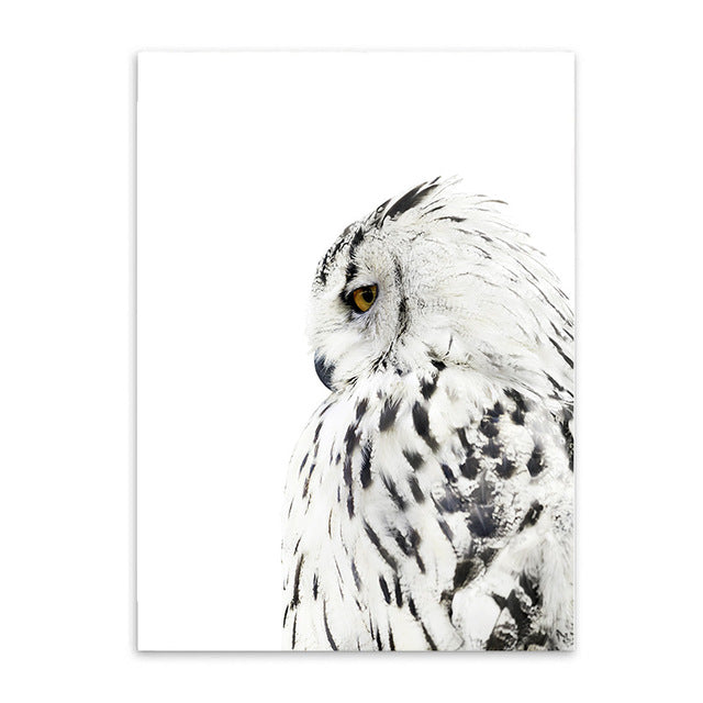 snowy owl cotton canvas poster the scandique