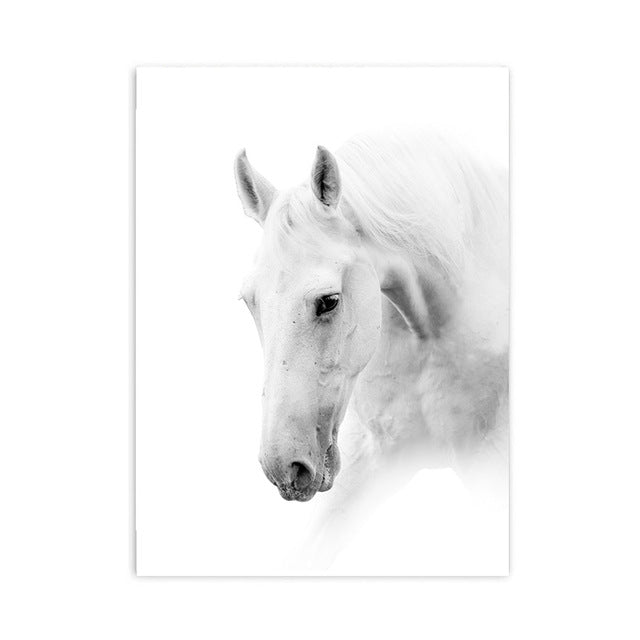 white horse cotton canvas poster the scandique