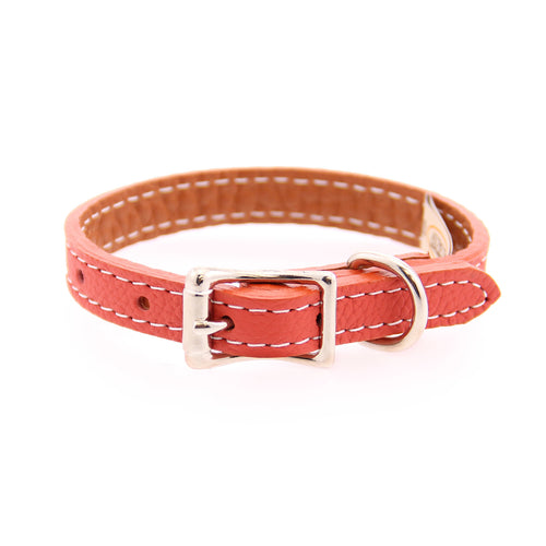 Tuscan Leather Dog Collar by Auburn Leather - Orange
