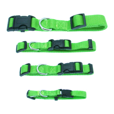 Barking Basics Dog Collar - Green