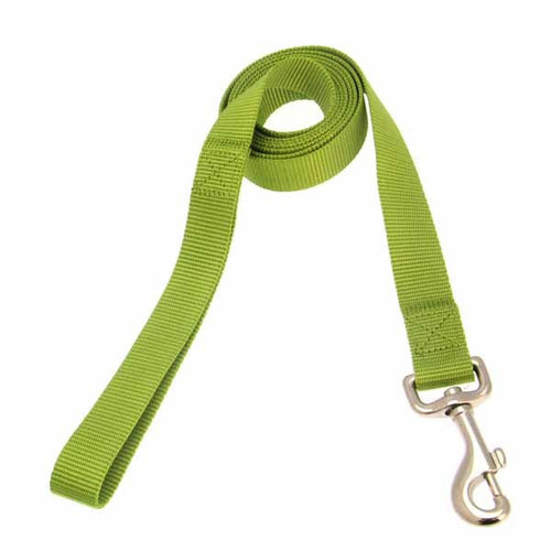 Zack and Zoey Nylon Dog Leash - Parrot Green