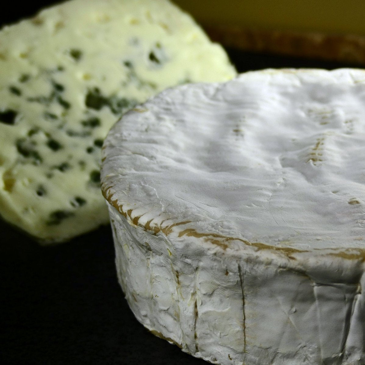 Camember et Roquefort - Fromage