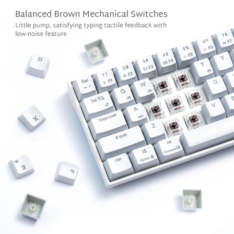 Moderate Balance of Brown Switches