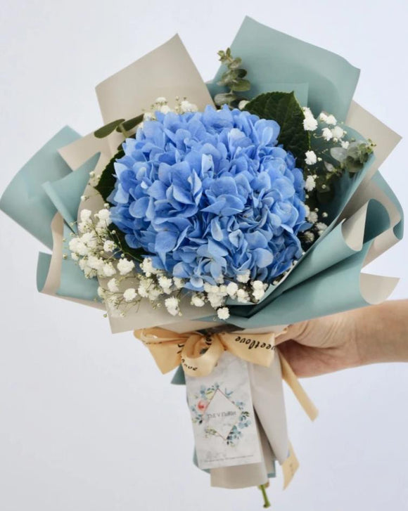 fresh hydrangea bouquet | Singapore Best Online Florist | Beautiful Flowers & Bouquets‎