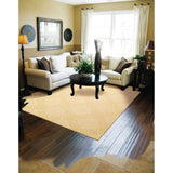 AMB01 Beige-Transitional-Area Rugs Weaver