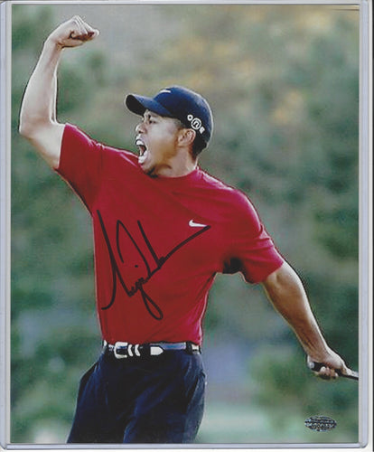 Tiger Woods Autographed 8x10 Photograph