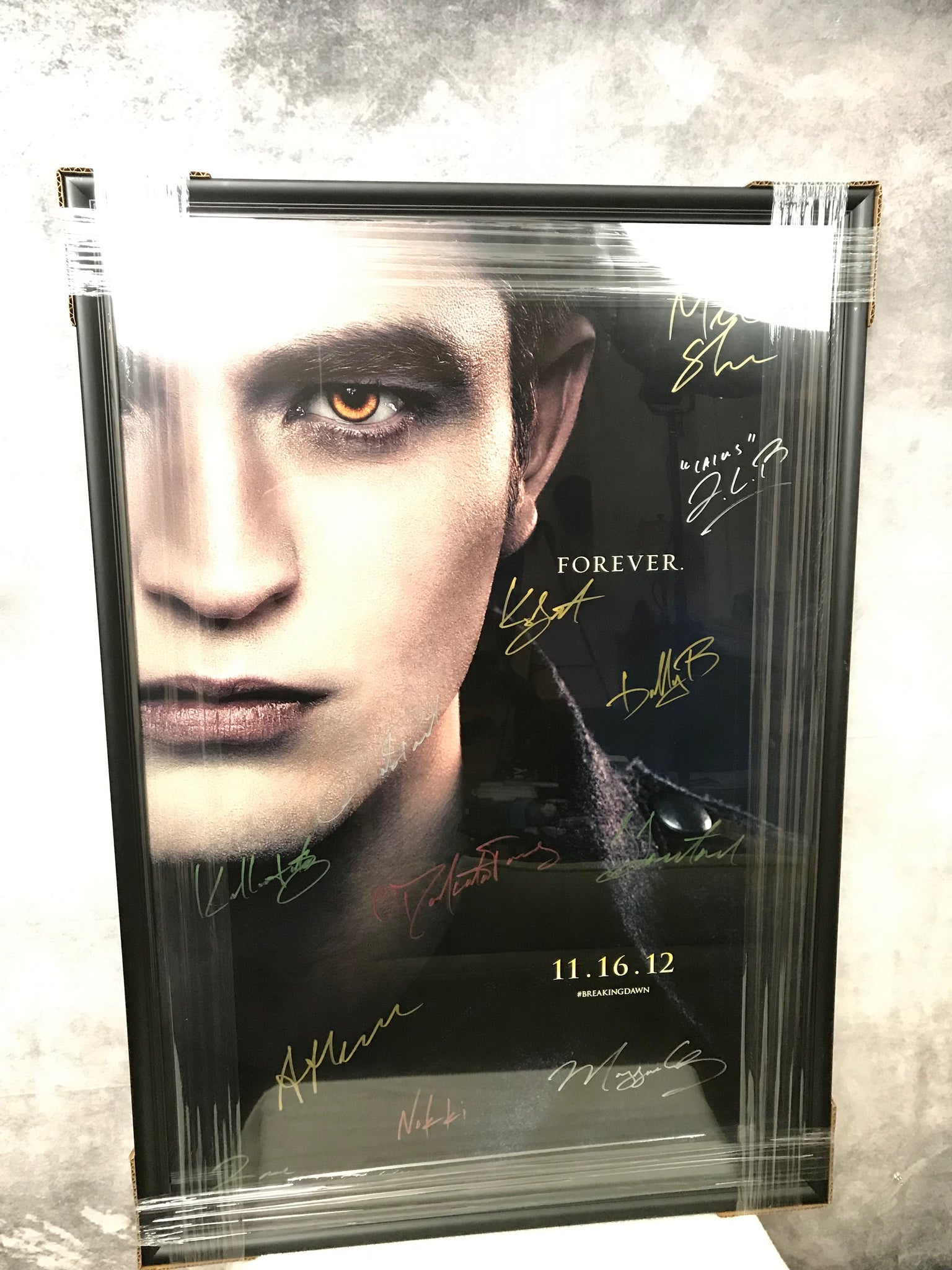 The Twilight Saga 11 16 12 Forever HIM Cast Autographed Theatrical Poster Framed