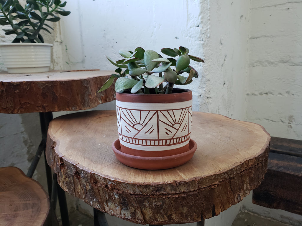 Tabletop Planter - Terracotta