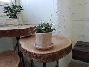 Tabletop Planter - Rust
