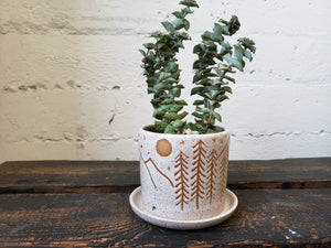 Tabletop Planter - Speckled Mountain