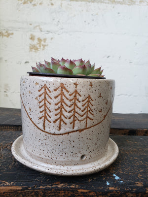 "4"" Planter - Speckled Mountain"