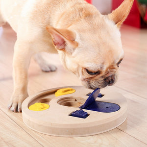 Pet Educational Interactive Feeder