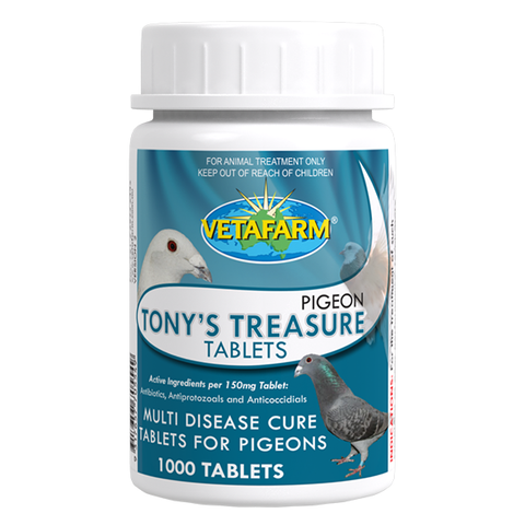 Tony's Treasure Tablets - AVIZONA
