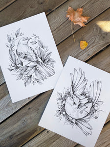 two bird illustration, fineline black ink as art prints on white paper, with dried roses and leaves, made by Lu Loram-Martin