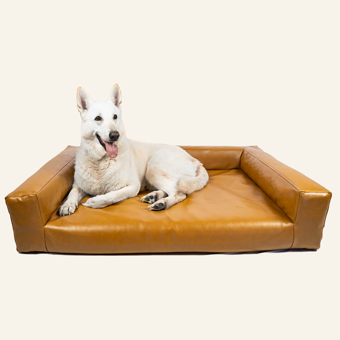 Picture of: Large Dog Couch Dog Bed Blvd Co