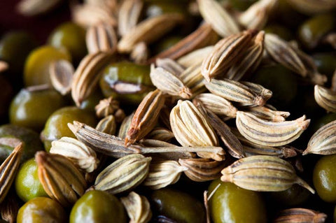 fennel-seeds-pregnancy-cravings