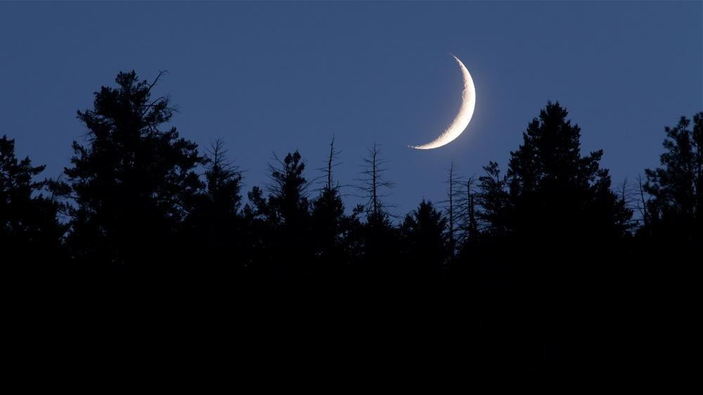 Moon Phase 101: A Complete Guide to the Waxing Crescent