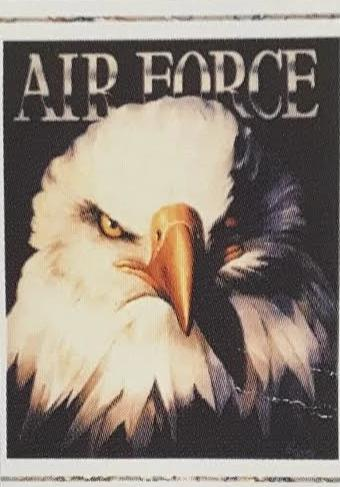 Air Force Eagle 23x35