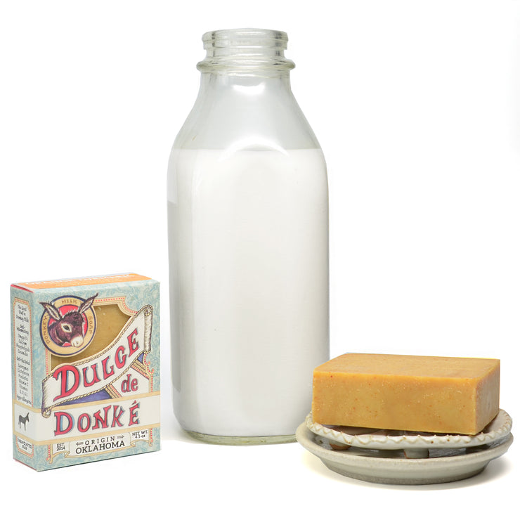 Probiotic Donkey Milk KEFIR Soap: Citrus & Spice