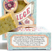 Pre-order for DECEMBER 20: Rosemary Mint Soap 4.5 oz