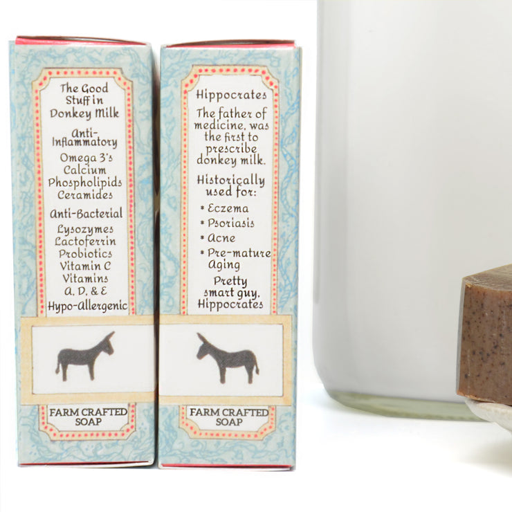 Exfoliating Spiced Coffee Donkey Milk Soap 4.5 oz