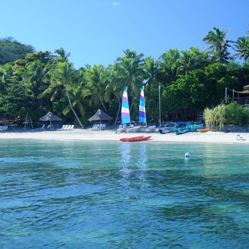 Castaway Island Resort  Day Cruise
