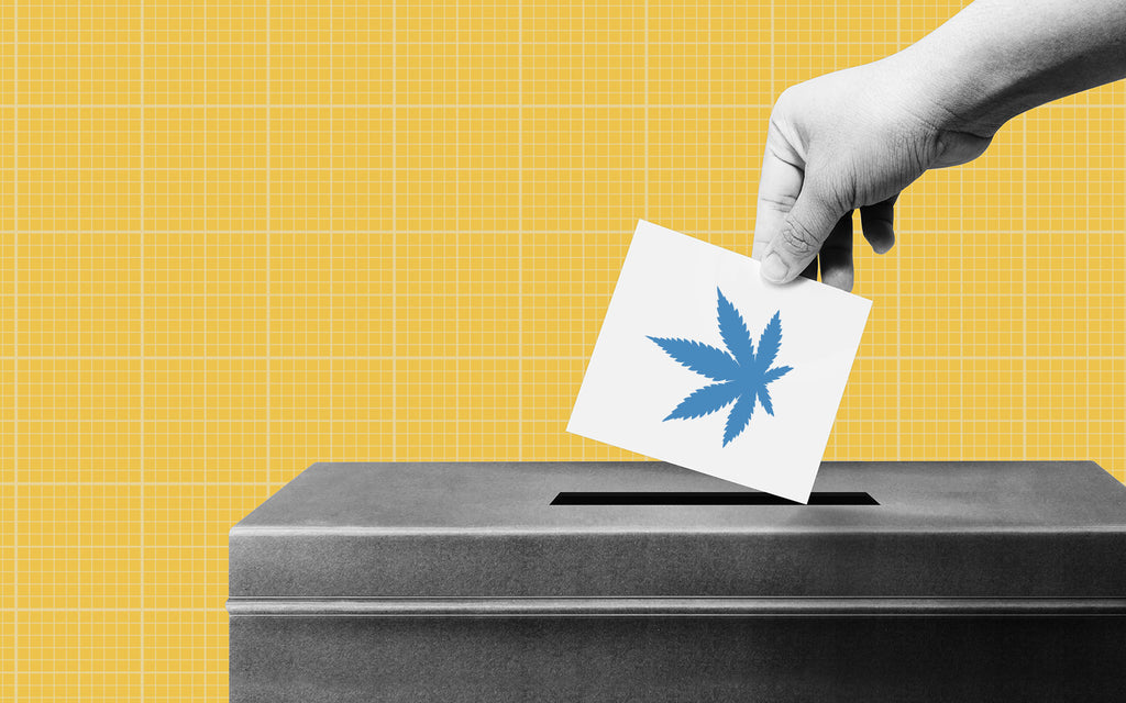 Trim Daddy's 2020 Cannabis Voter's Guide