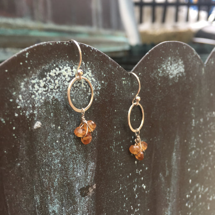 Sterling Silver and Hessonite Dangle Earrings