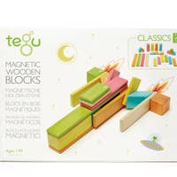 Tegu 24 Piece Magnetic Wooden Block Set (blossom)