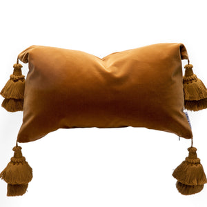 Velvet Pillows With Handmade Tassels