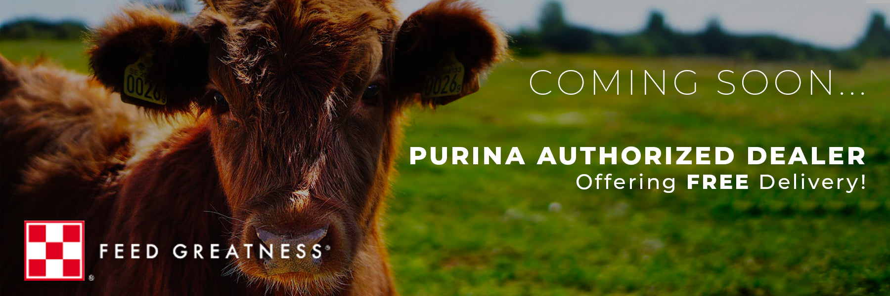 Coming soon. Purina authorized dealer