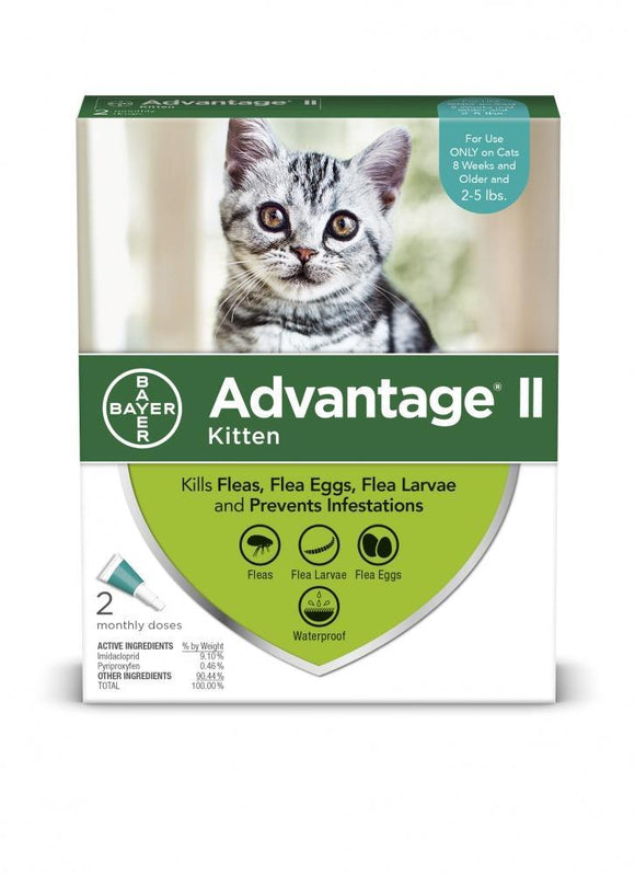 Bayer Advantage II Kitten