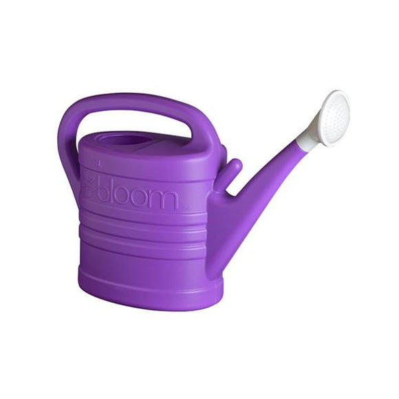 BLOOM 2 GALLON WATERING CAN