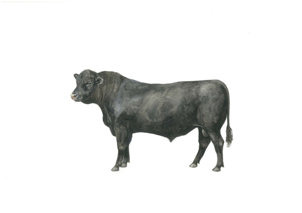 Black Bull - Big Mike Print