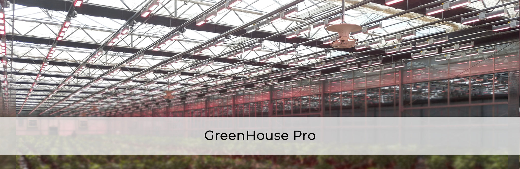 GreenHouse Lighting | California LightWorks