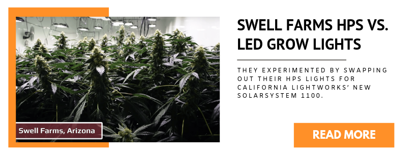 Swell Farms HPS Vs. LED Grow Lights - Case Study