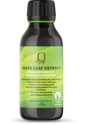 Olive Leaf Extract Maximum Formula with Phyto-Nutrients 16oz - My Olive Leaf
