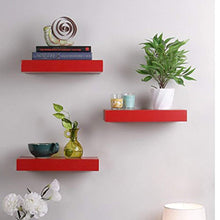 Load image into Gallery viewer, Driftingwood Wall Shelves Floating Wall Racks Set of 3 Shelves