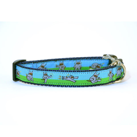 Ninja Dog collars + print - Shawnimals x Six Point Pet