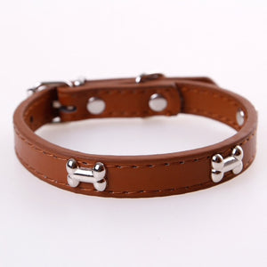 brown leather collar with metal bones