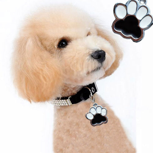 Doggy wearing Black and White paw accessory charm
