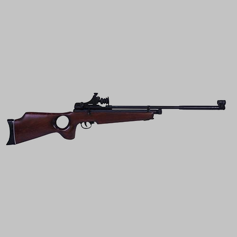 Beeman SAG CO2 .177 Caliber Air Rifle with Thumbhole Stock