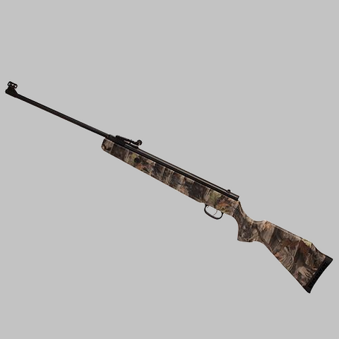 Beeman Predator .22 Caliber Air Rifle