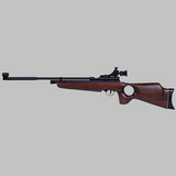 Beeman SAG .22 Caliber CO2 Air Rifle with Thumbhole Stock