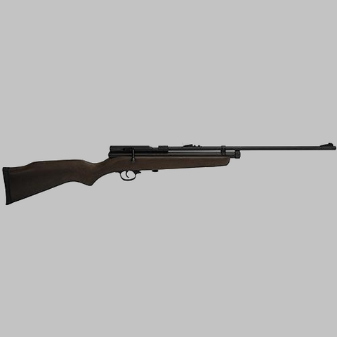 Beeman SAG .22 Caliber CO2 Air Rifle