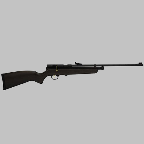 Beeman SAG Deluxe .22 Caliber CO2 Air Rifle