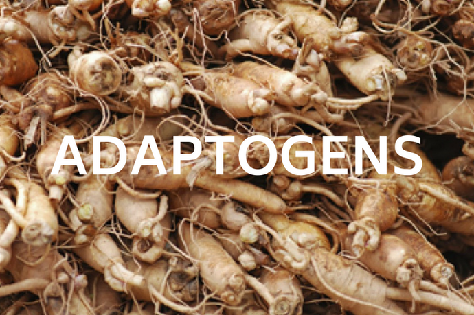 Adaptogens:  Ancient Herbs for Modern Times