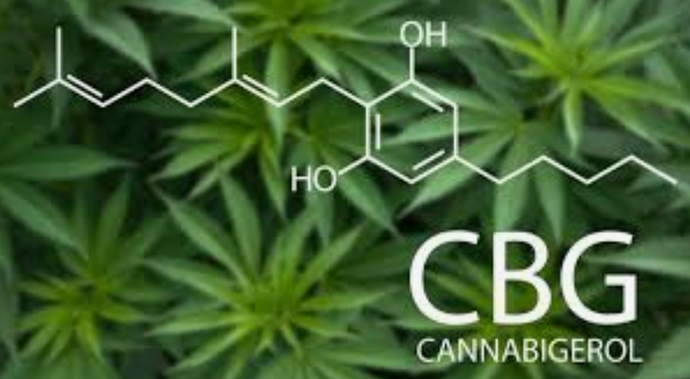 CBG - The Mother of Cannabinoids